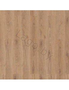 Ламинат Tarkett Дуб Лесной Золотой 42065401